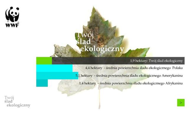 Ślad ekologiczny. Minimalizm a ekologia.