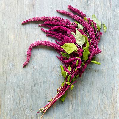 bukiet-ślubny-amarantus