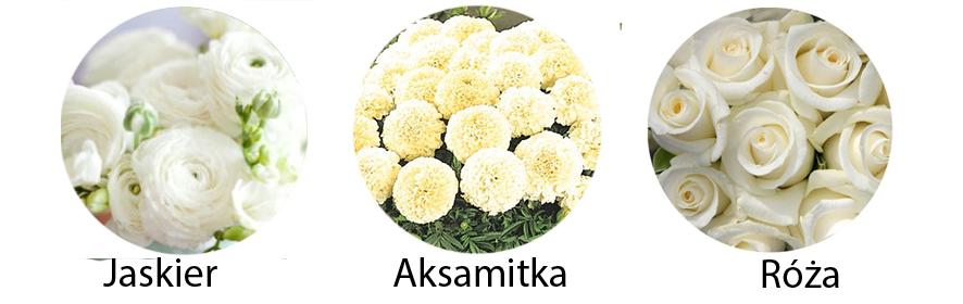 kwiaty sezonowe październik