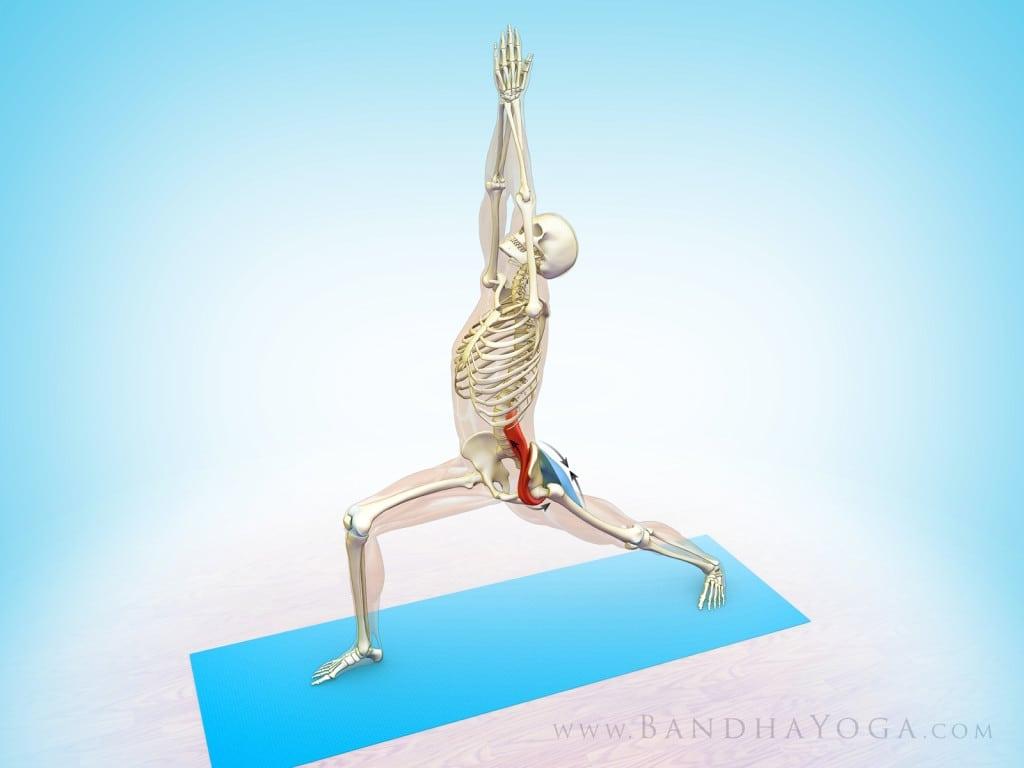 pozycje jogi - wojownik joga