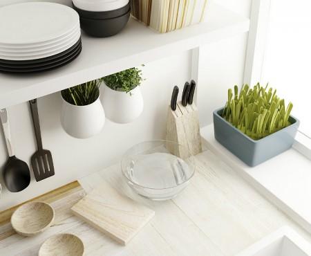 Ekologiczny dom – naturalne środki czystości.