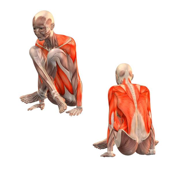 joga na płaski brzuch miesnie