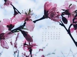 maj tapeta z kalendarzem
