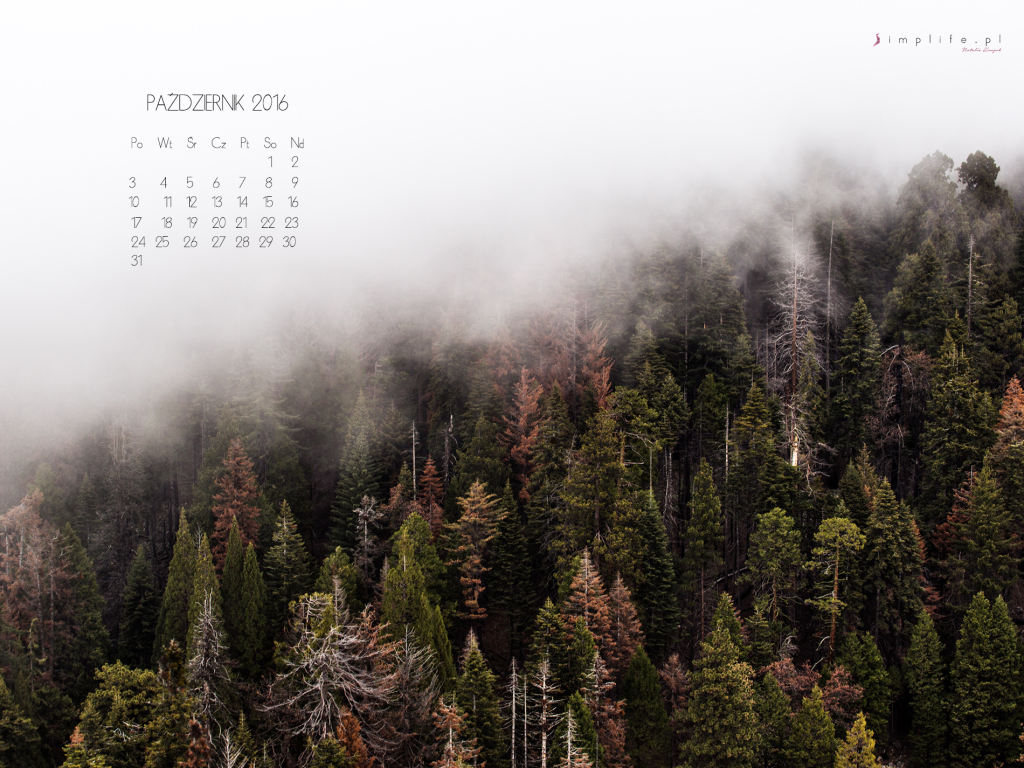 tapeta-na-pulpit-z-kalendarzem-pazdziernik-4x3