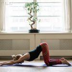 joga w domu dla początkujących