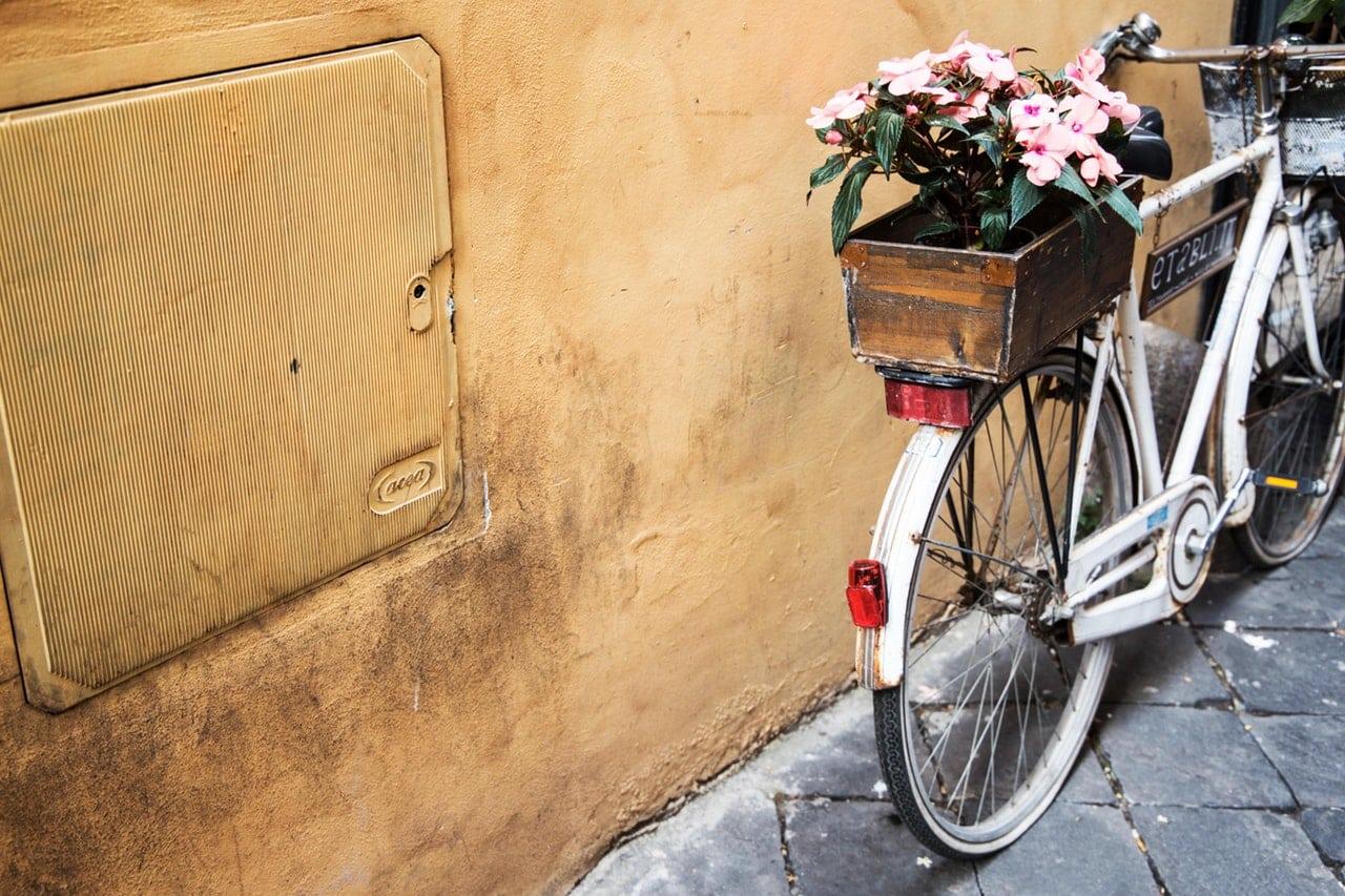 wakacyjne wycieczki rowerowe