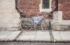 warto jeździć rowerem