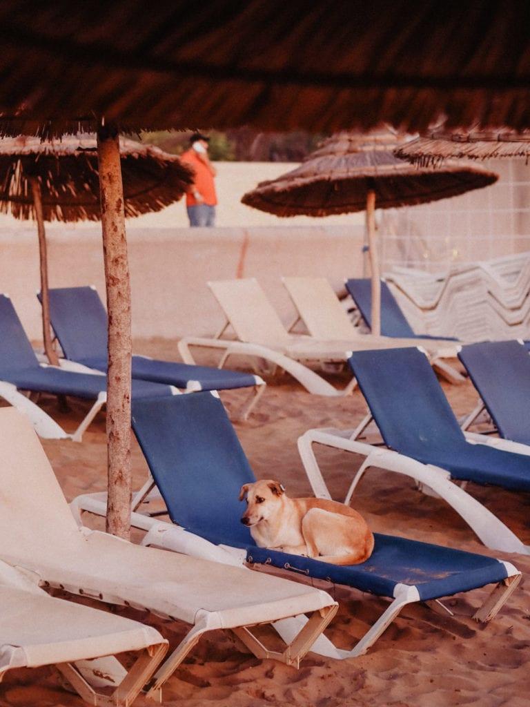 agadir plaża zachód