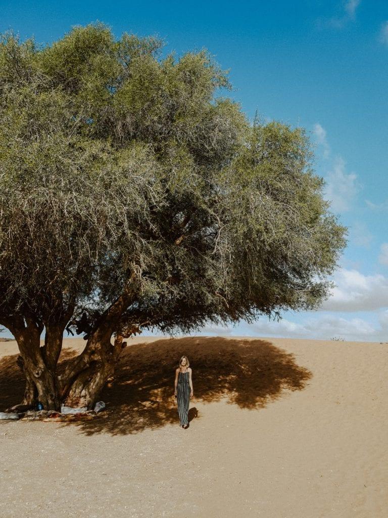 argana maroko