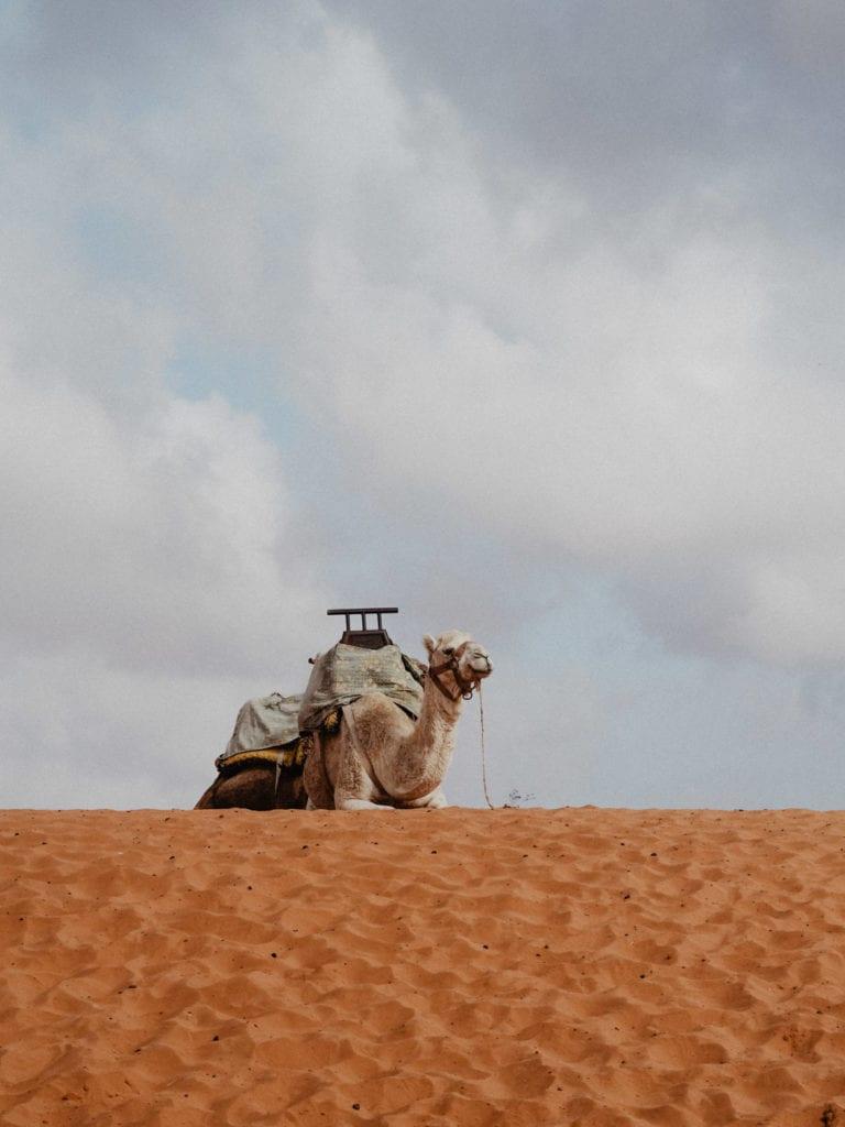 mała sahara maroko