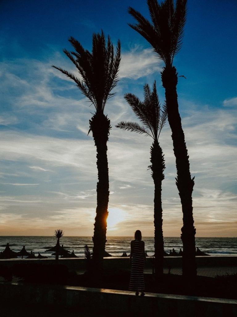 maroko palmy